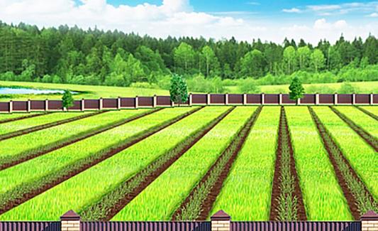 Цель приобретения земли