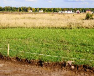 Земельный аукцион