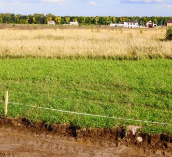 Подаем заявку на участие в земельном аукционе